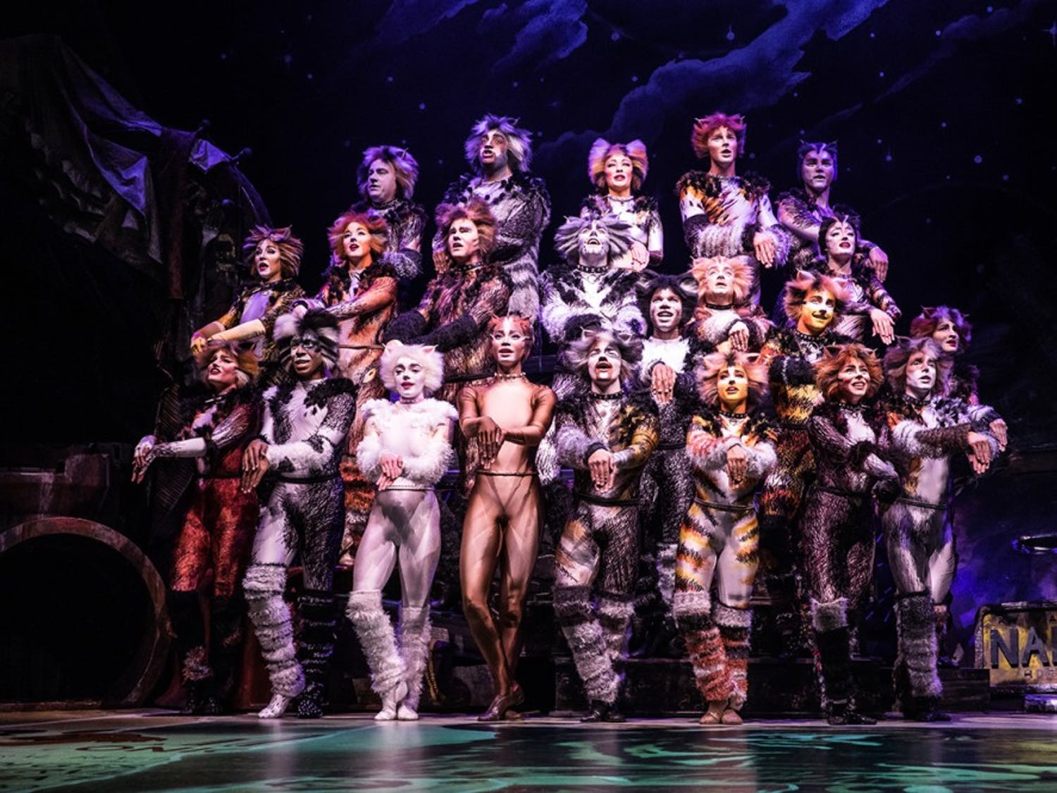 """Broadway's """"Cats"""" returns from hiatus and brings its traveling show to Buffalo."""
