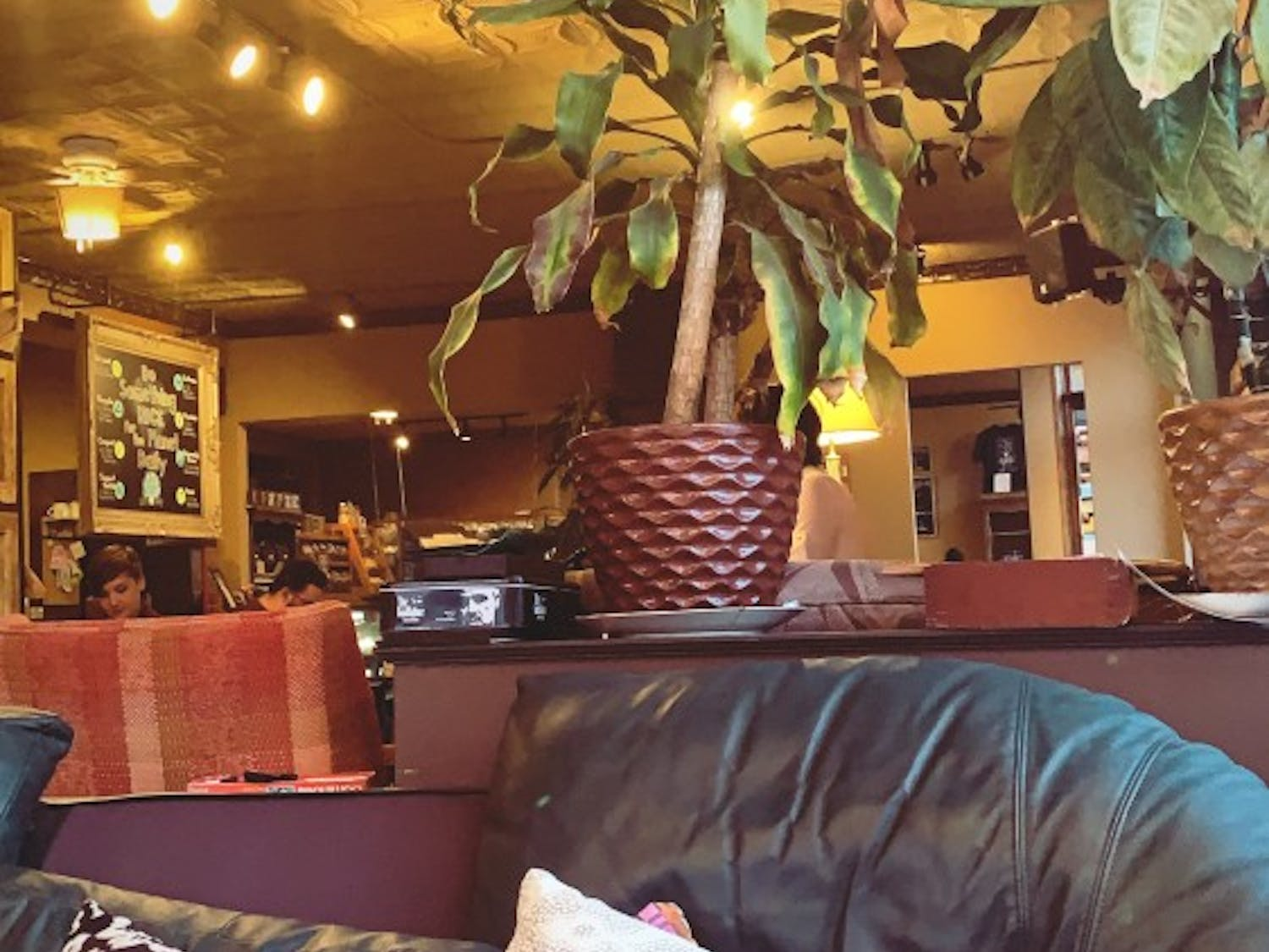 Daily Planet Coffee Company on Hertel Avenue.
