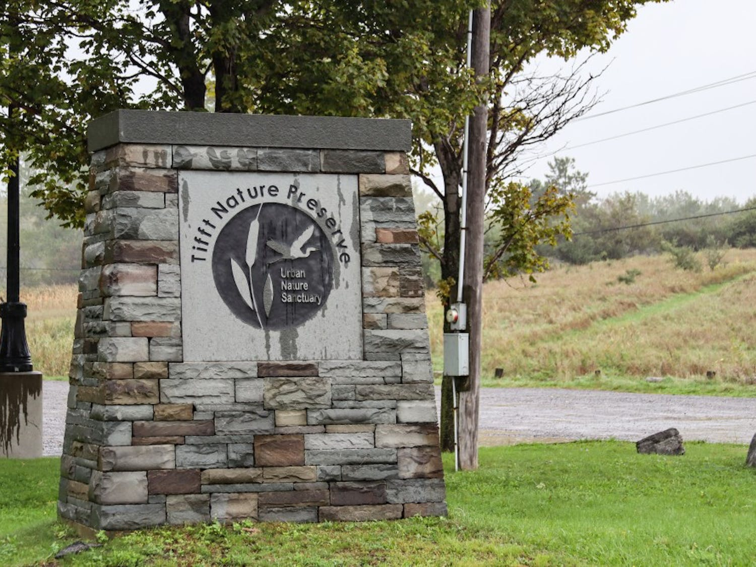 Tifft Nature Preserve is a five-minute drive from downtown Buffalo and located on the Outer Harbor.