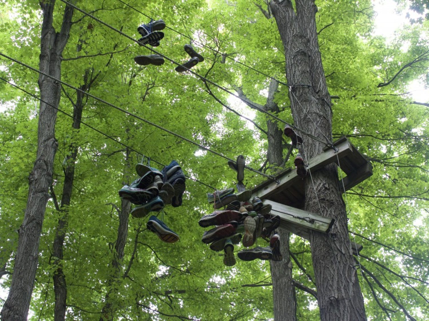 Shoes hang from the ropes course located next to Sweet Home Senior High School. The course is no longer officially used by either school.