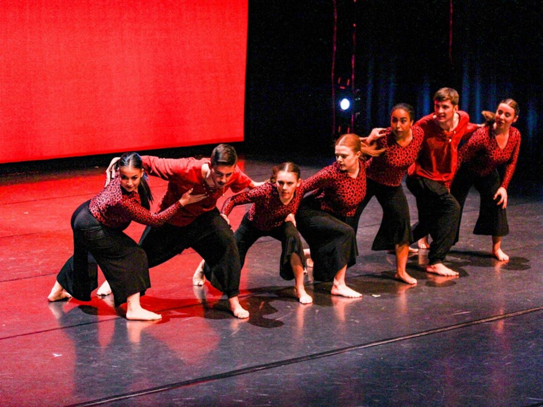 "Zodiaque dancers performing ""Capo-Sal-Soeira"" at CFA on Oct. 17."