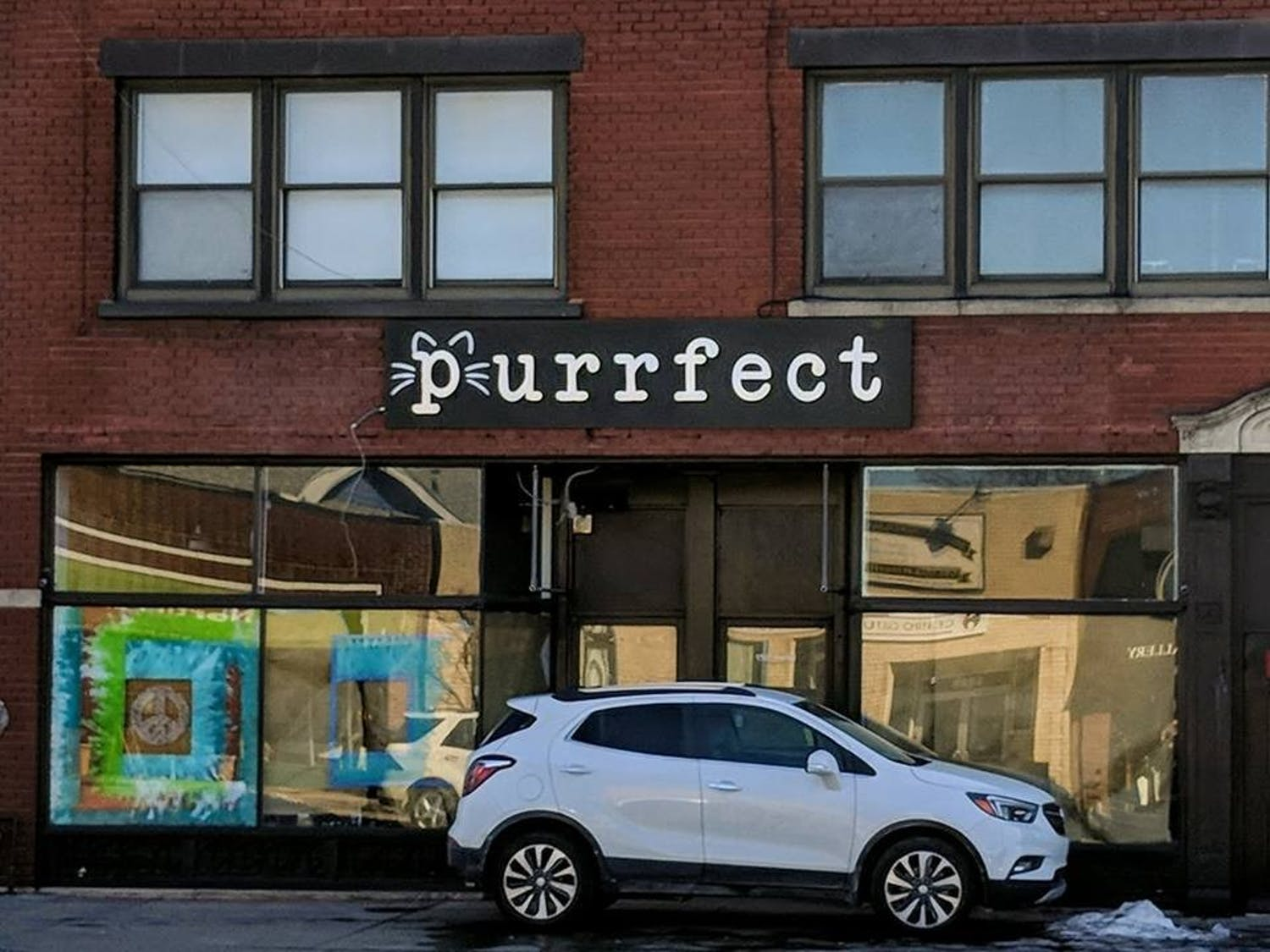 Roughly a dozen furry creatures will roam Buffalo's first ever cat cafe. The cafe will be located just a few minutes from UB's South Campus and feature an adjacent, full-service restaurant.
