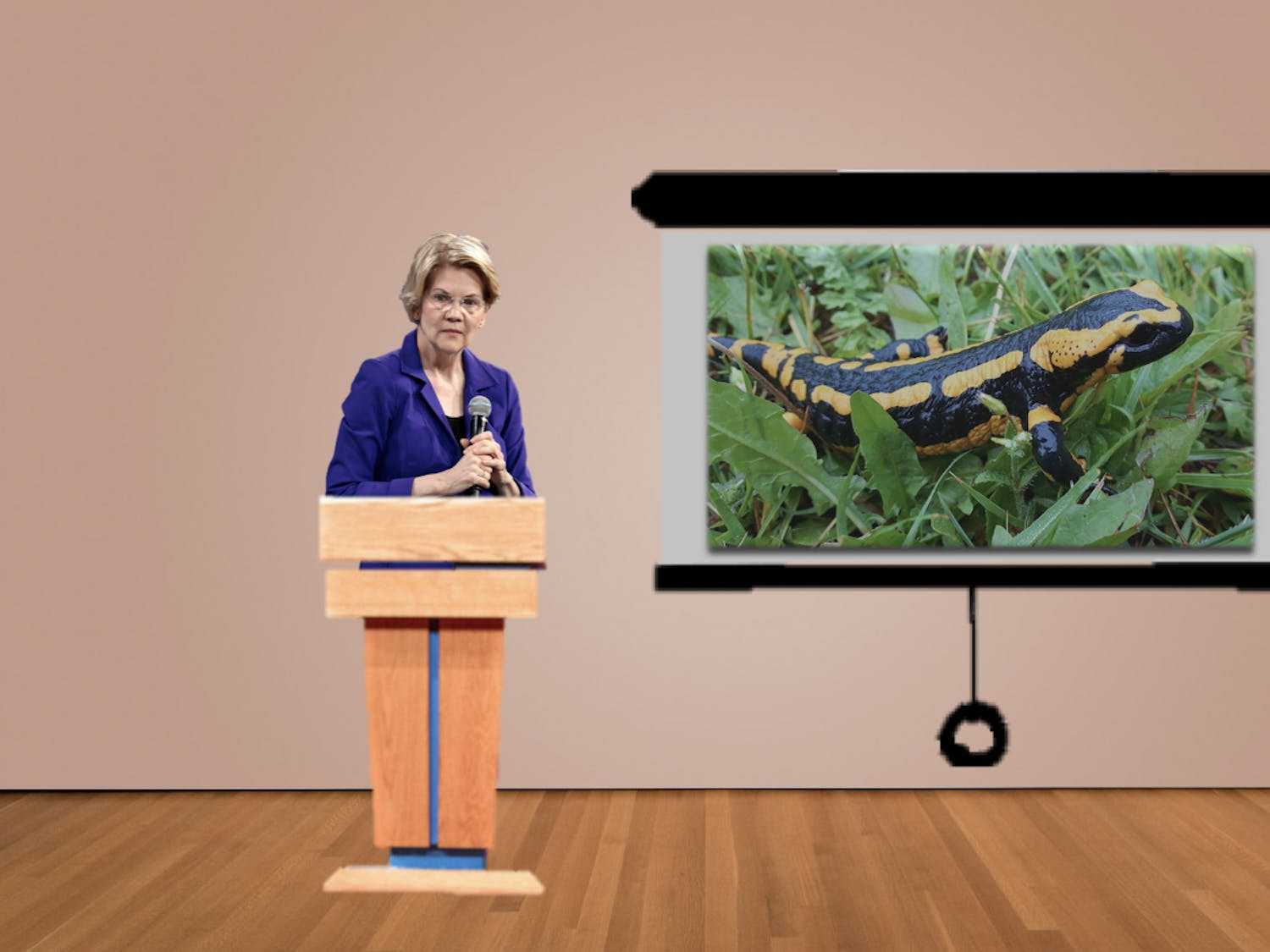"Elizabeth Warren tries to appeal to voters by presenting her salamander knowledge. ""This is a Fire Salamander,"" she says."