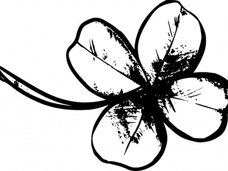 four-leaf-clover-drawing.jpg