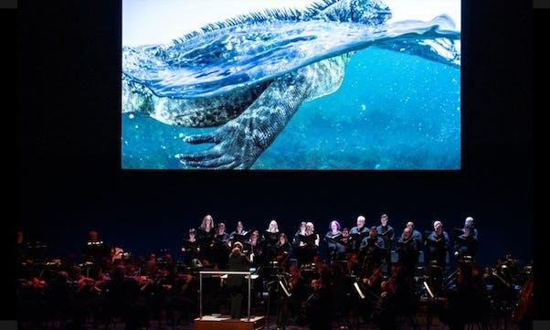 arts-SymphonyForOurWorld.jpg