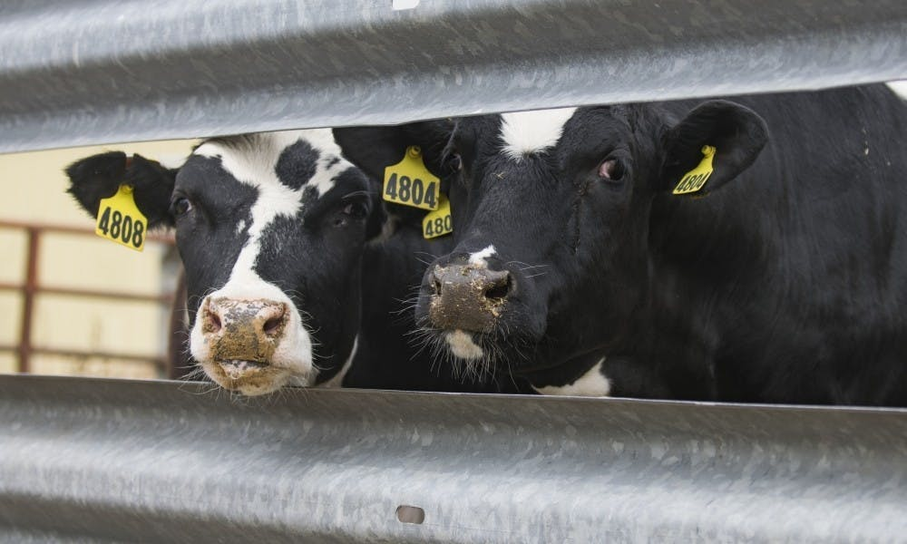 <p>Wisconsin has lost nearly two dairy farms per day the past two years to worsening economic conditions, and small farmers have felt the stress — and a need for better mental health services.&nbsp;</p>