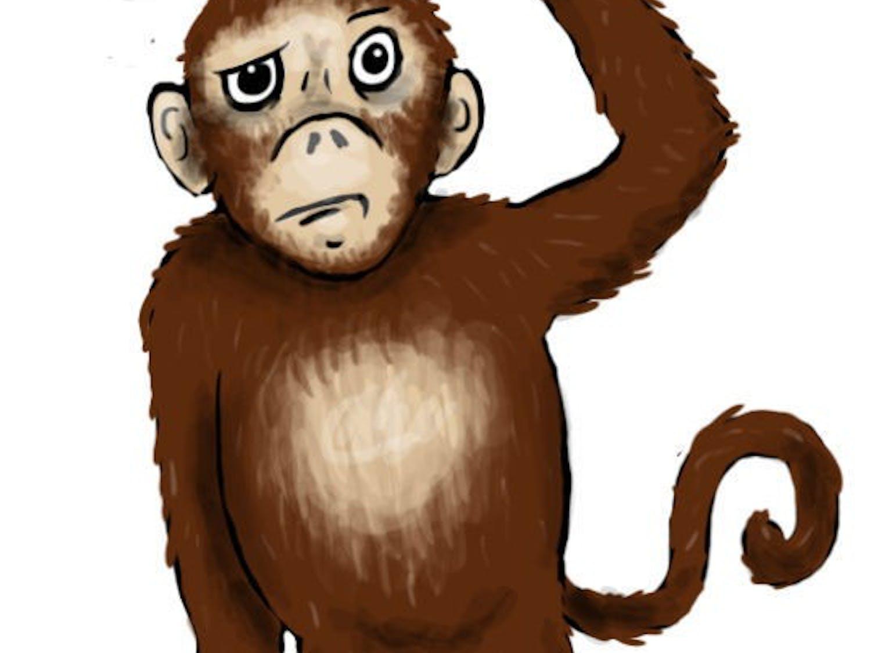 ADHD monkey