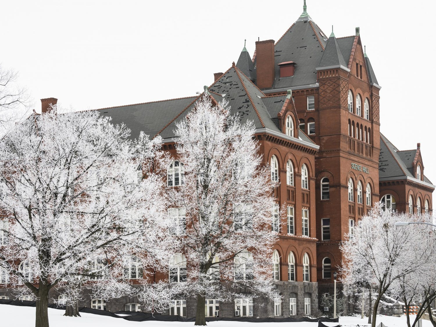 Rime ice coats the branches of trees flanking Science Hall.