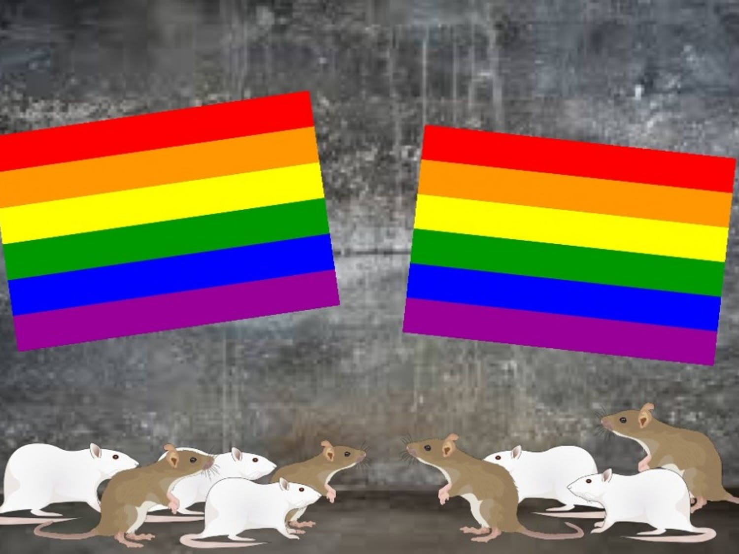 Mr. Ratburn seeks peaceful vengeance by planning his gay rat honeymoon in the walls of Alabama Public Television headquarters.