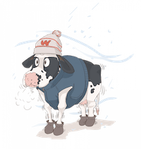 Extreme_weather_cows_smaller.png