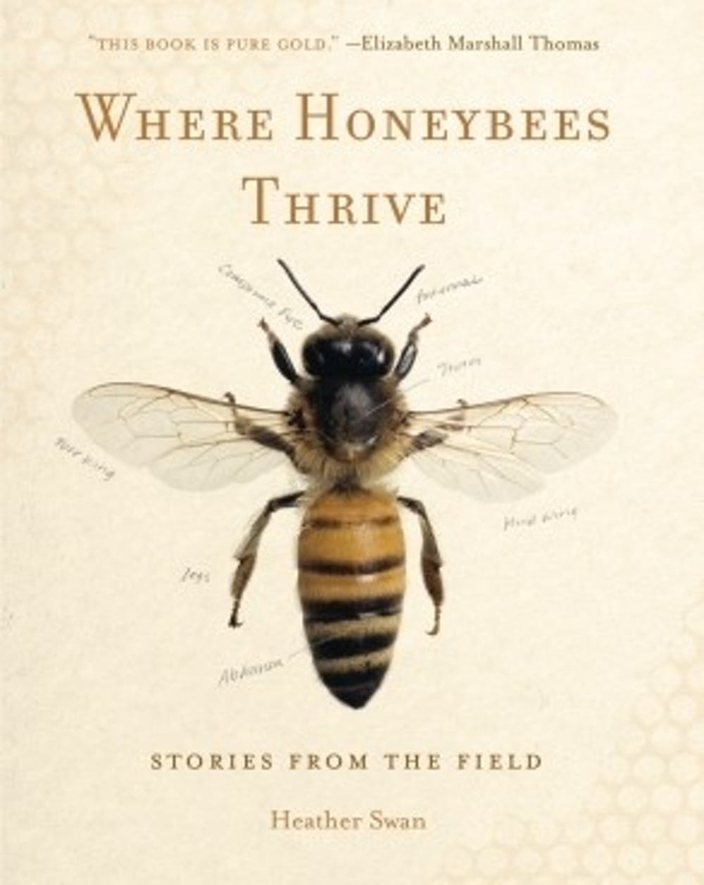 Swan defends the honeybee's legitimacy against public indifference in herpowerful new book.