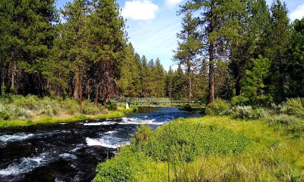 Former UW-Madison professor Aldo Leopold was a pioneer in the movement for wilderness conversation.