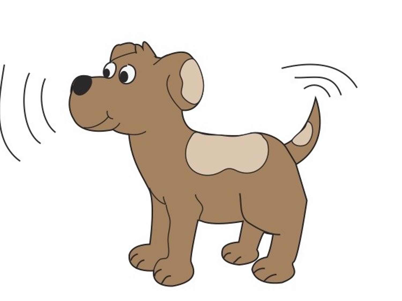 Shaky Dog