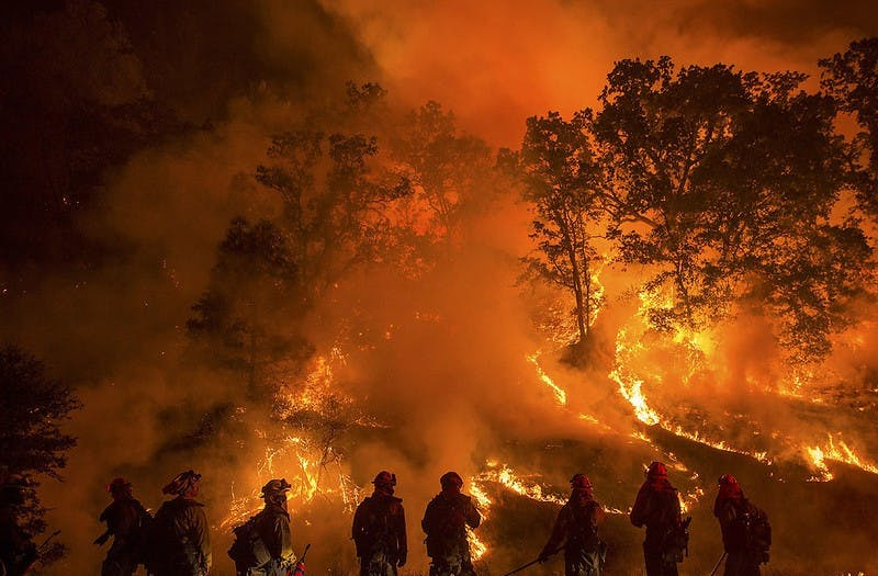 Wildfires have blighted California and the rest of the west coast this year at a historic level