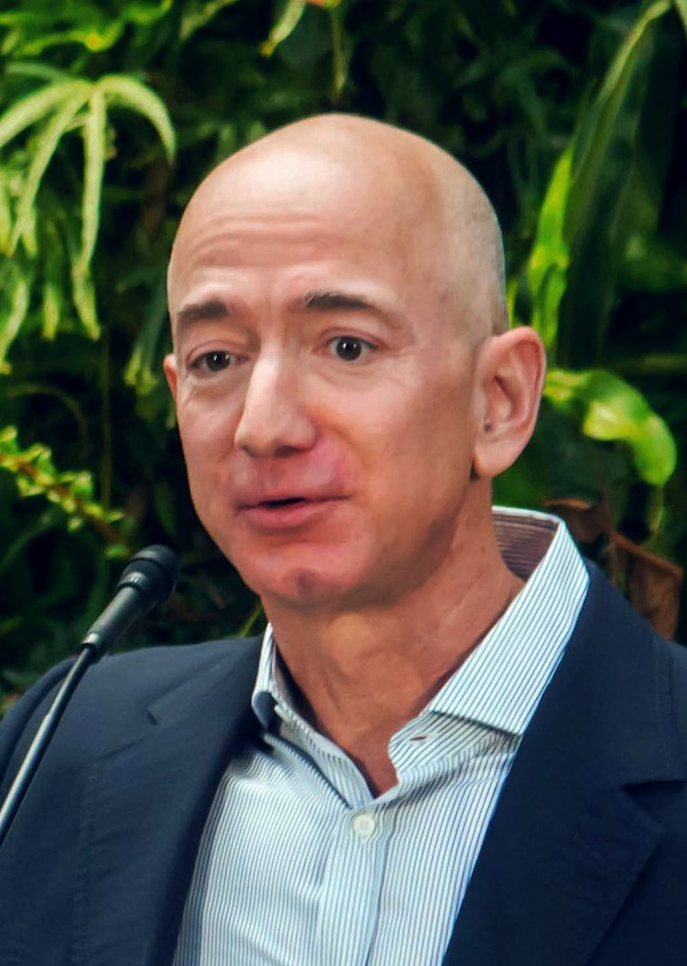Jeff_Bezos_at_Amazon_Spheres_Grand_Opening_in_Seattle_-_2018_(39074799225)_(cropped).jpg
