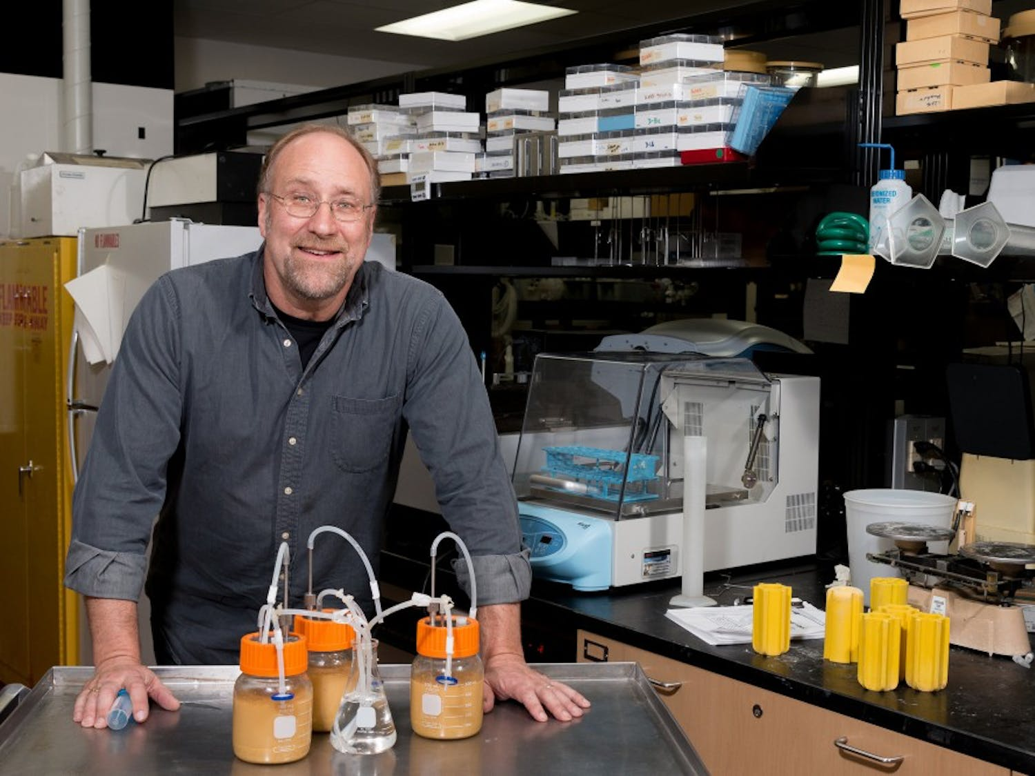 By genetic engineering lactic acid bacteria, James Steele turns a negative into a positive in food science industries.