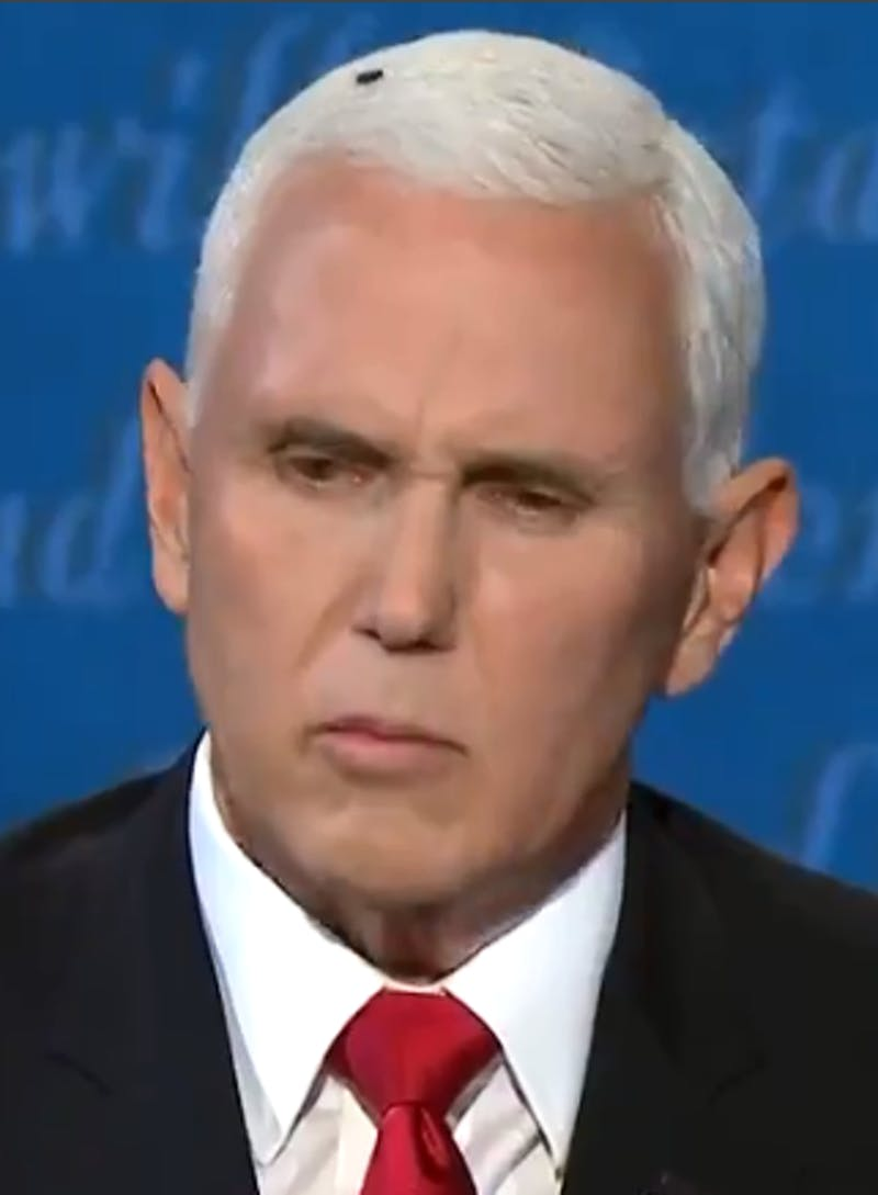 Arguably the most memorable moment of the debate was when a fly landed on Pence's head and stayed there for two whole minutes, as he was in the middle of denying the existence of systematic racism in our country.