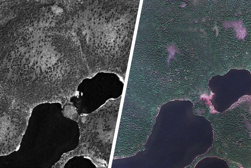 <p>Environmental Science Prof. Howie Epstein and graduate student Gerald Frost identified areas of increased shrub growth in the Arctic using declassified spy satellite photos.</p>