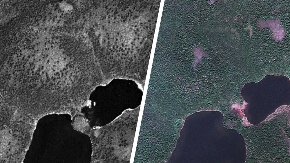 Environmental Science Prof. Howie Epstein and graduate student Gerald Frost identified areas of increased shrub growth in the Arctic using declassified spy satellite photos.