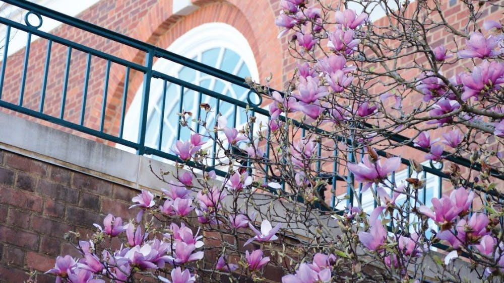 Top 10 things to do in Charlottesville this spring.