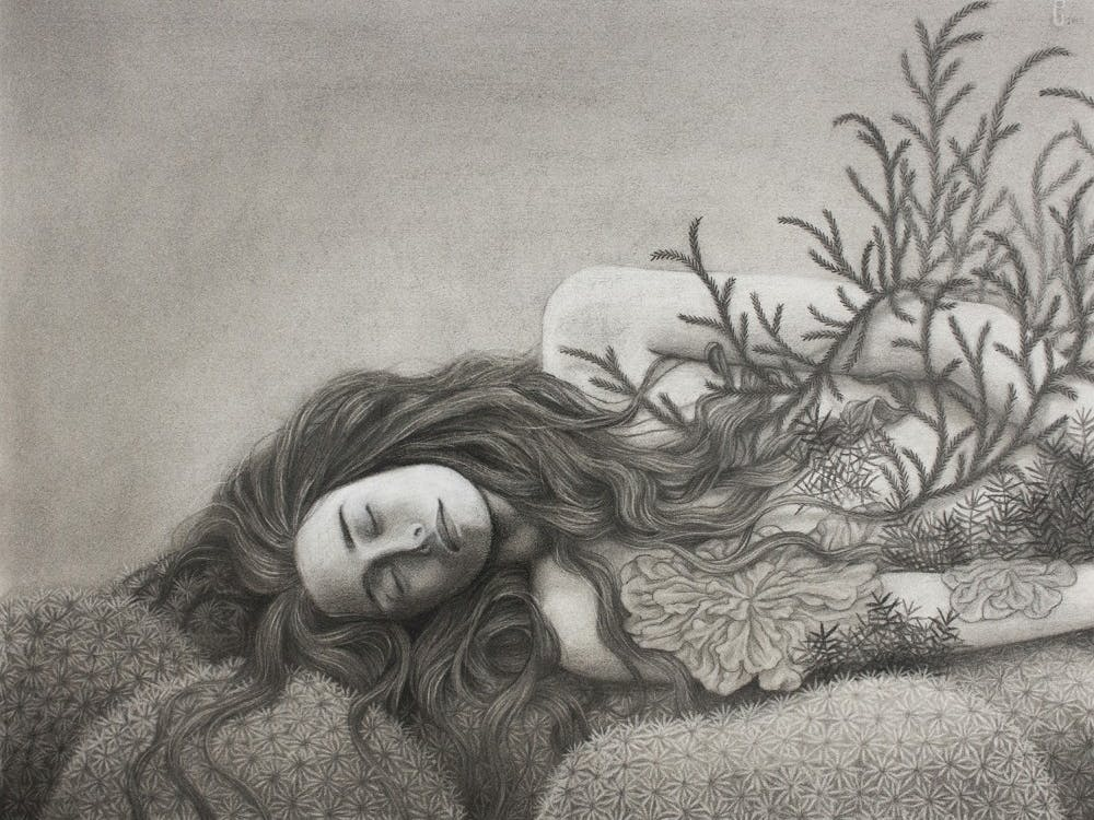 """Artist Sam Gray created a charcoal piece titled """"Bryophyte,"""" which she says was largely inspired by her own relationship with the environment and her goals for it in the future."""