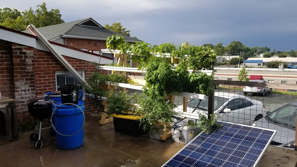 In hydroponic farming, plants are grown in nutrient-rich, water solvent mineral solutions rather than in soil.