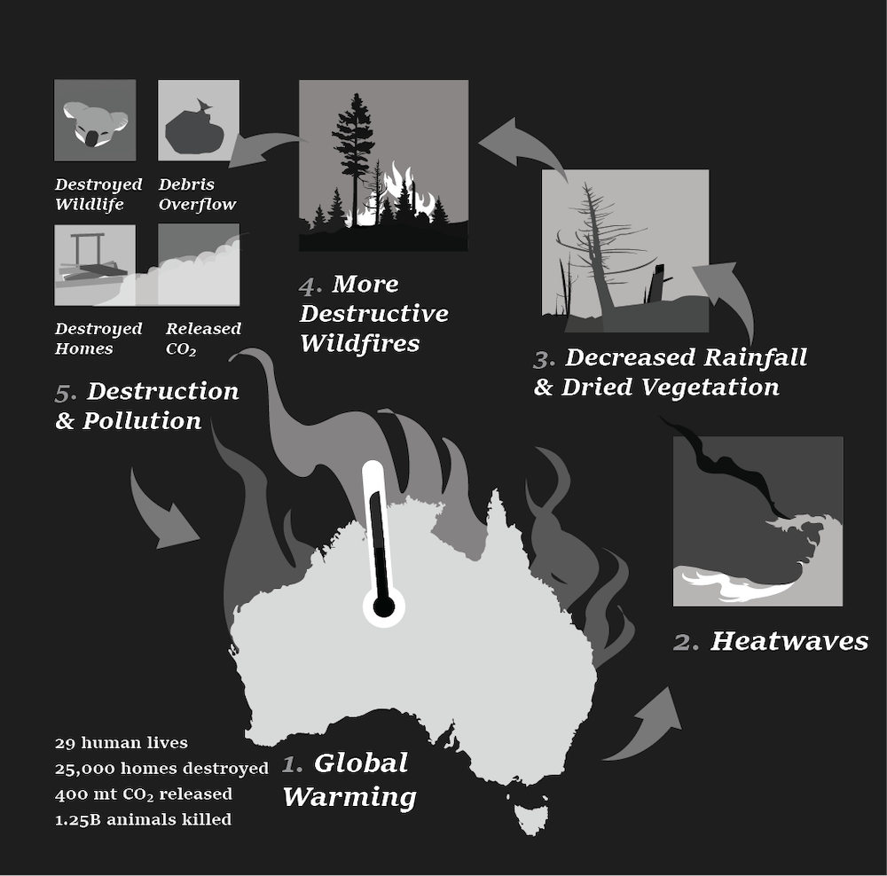 <p>The effects of global warming have created destructive wild fires throughout Australia, disrupting ecosystems and increasing pollution. Statistics are from the Atmosphere Monitoring Service.&nbsp;</p>