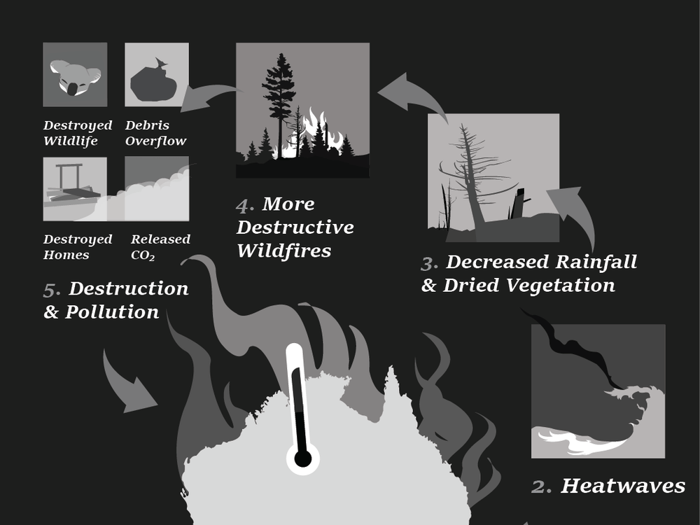 The effects of global warming have created destructive wild fires throughout Australia, disrupting ecosystems and increasing pollution. Statistics are from the Atmosphere Monitoring Service.