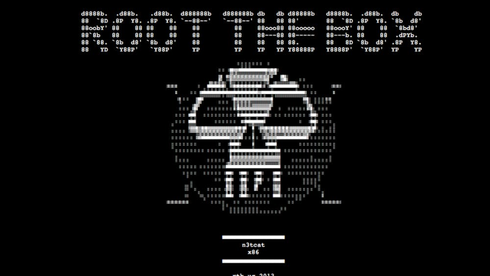 "An anonymous hacker under the name ""Root the Box"" caused the University's main webpage to redirect to a picture of the group's logo, a pixelated white skull on a black background, before going to the @R00tTh3B0x twitter feed Monday night."