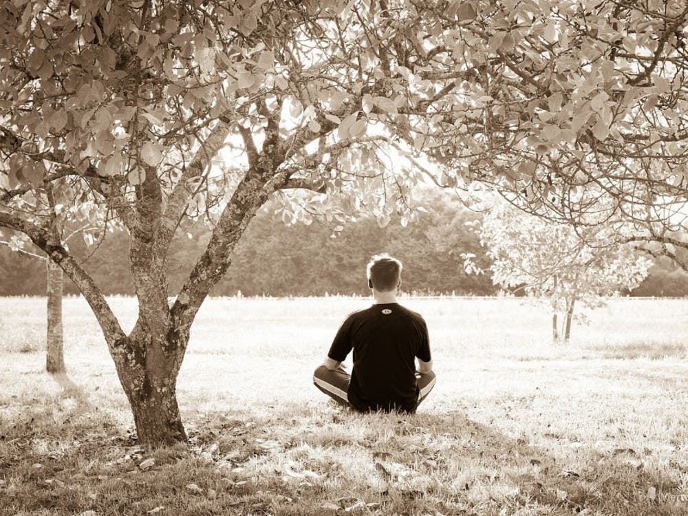 Some sessions focus on a particular form of meditation called heartfulness meditation, where practicers gently bring attention to the heart rather than focusing on surroundings or the mind.