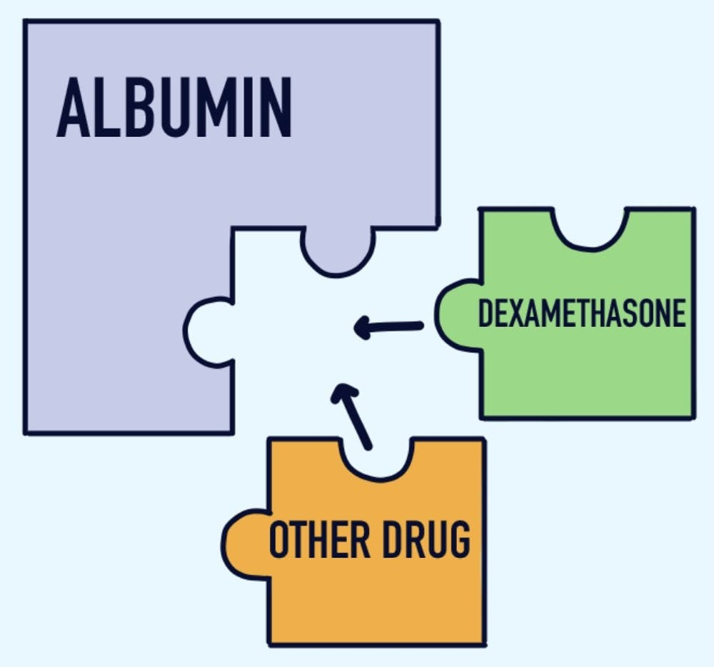 <p>New research indicates that other drugs and the hormone testosterone may compete with dexamethasone for the limited sites on serum albumin, resulting in drug displacement, which makes a treatment less effective.</p>