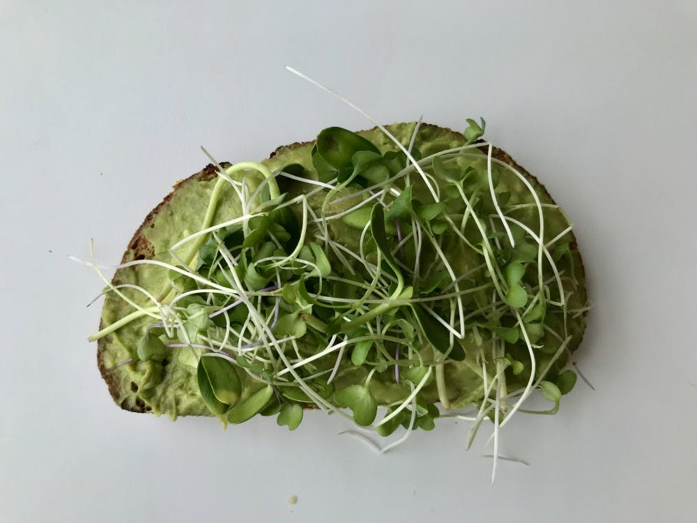 Lf Food Healthy Snack Avo Toast