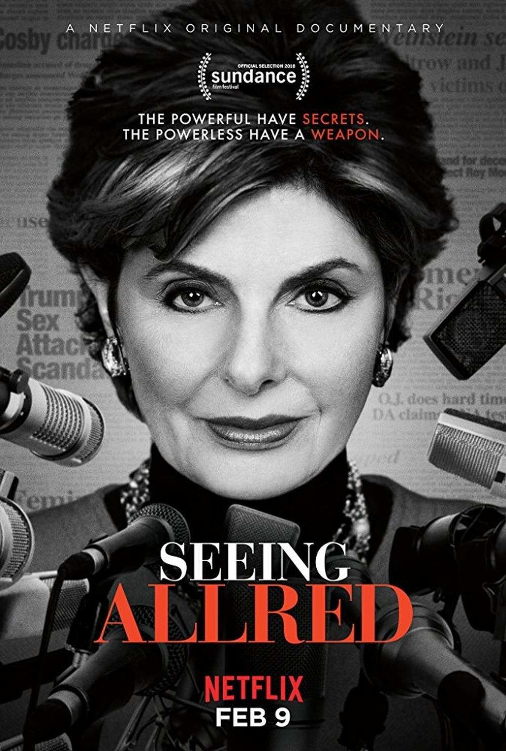 "<p>Directors Roberta Grossman and Sophie Sartain start ""Seeing Allred"" with a whirlwind montage, spanning the controversy surrounding the revolutionary attorney.</p>"