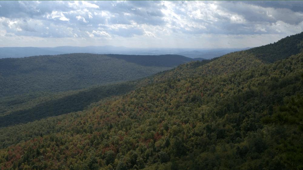 Little Sluice Mountain, GWNF