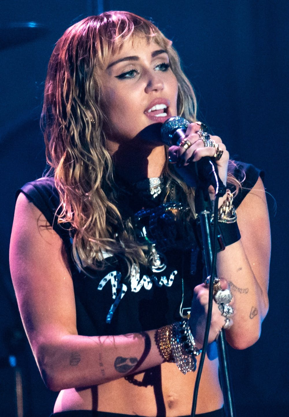 <p>After beginning her career on Disney Channel, Miley Cyrus has expanded into a variety of music genres.</p>