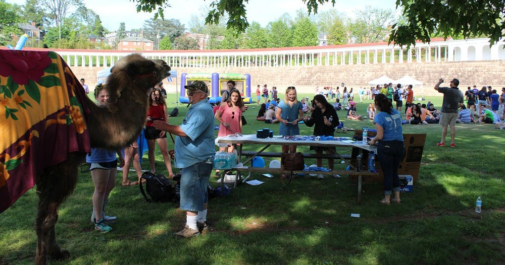 <p>Students pet and took pictures with the live camel at Israel Fest</p>
