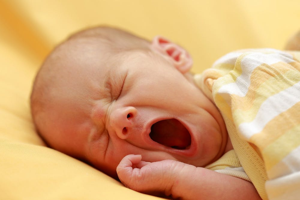2560px-yawning-infant-august-2018