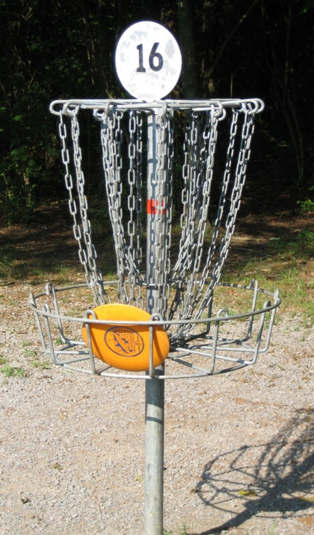 disc-golf-in-basket