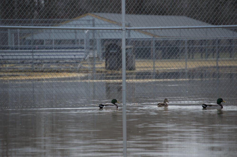 island park flooding-4