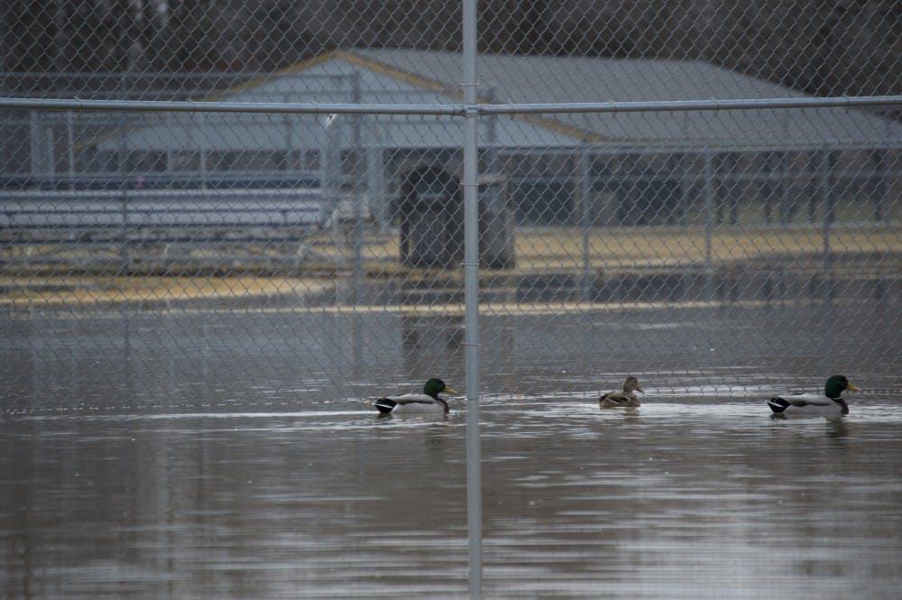 island-park-flooding-4