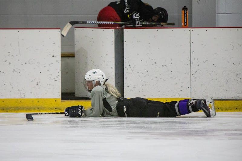 HockeyPhotoStoryFinalCut.jpeg