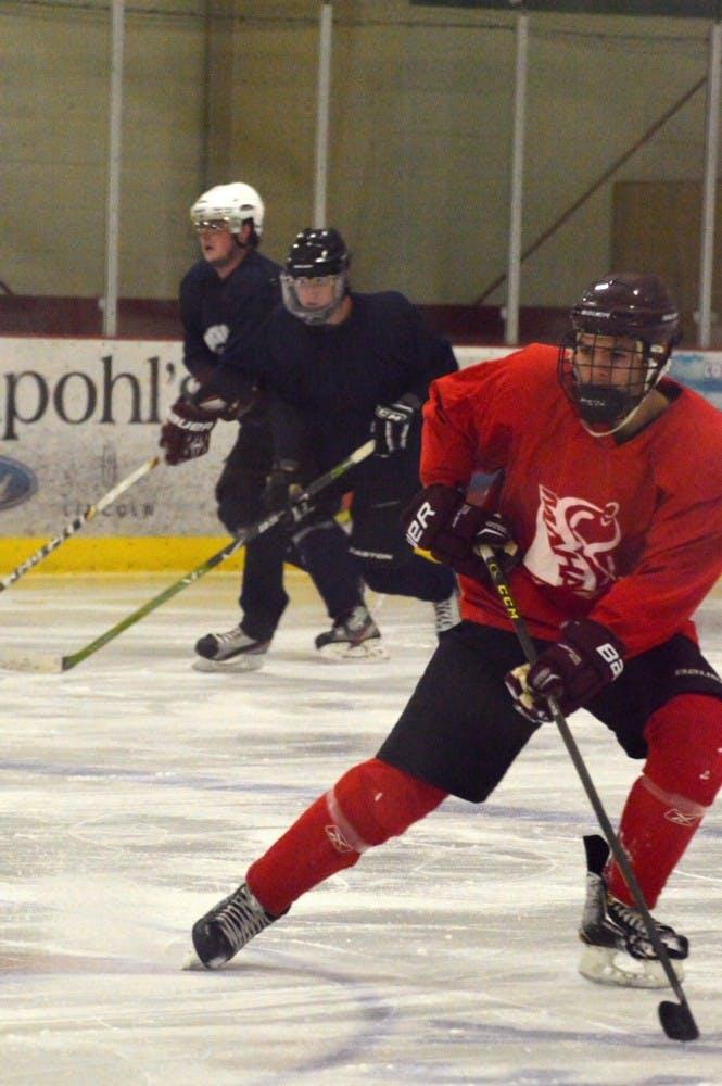 2016_0120_hockeypractice_ml006