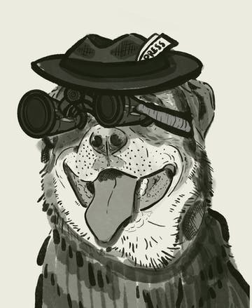 Western Watchdog