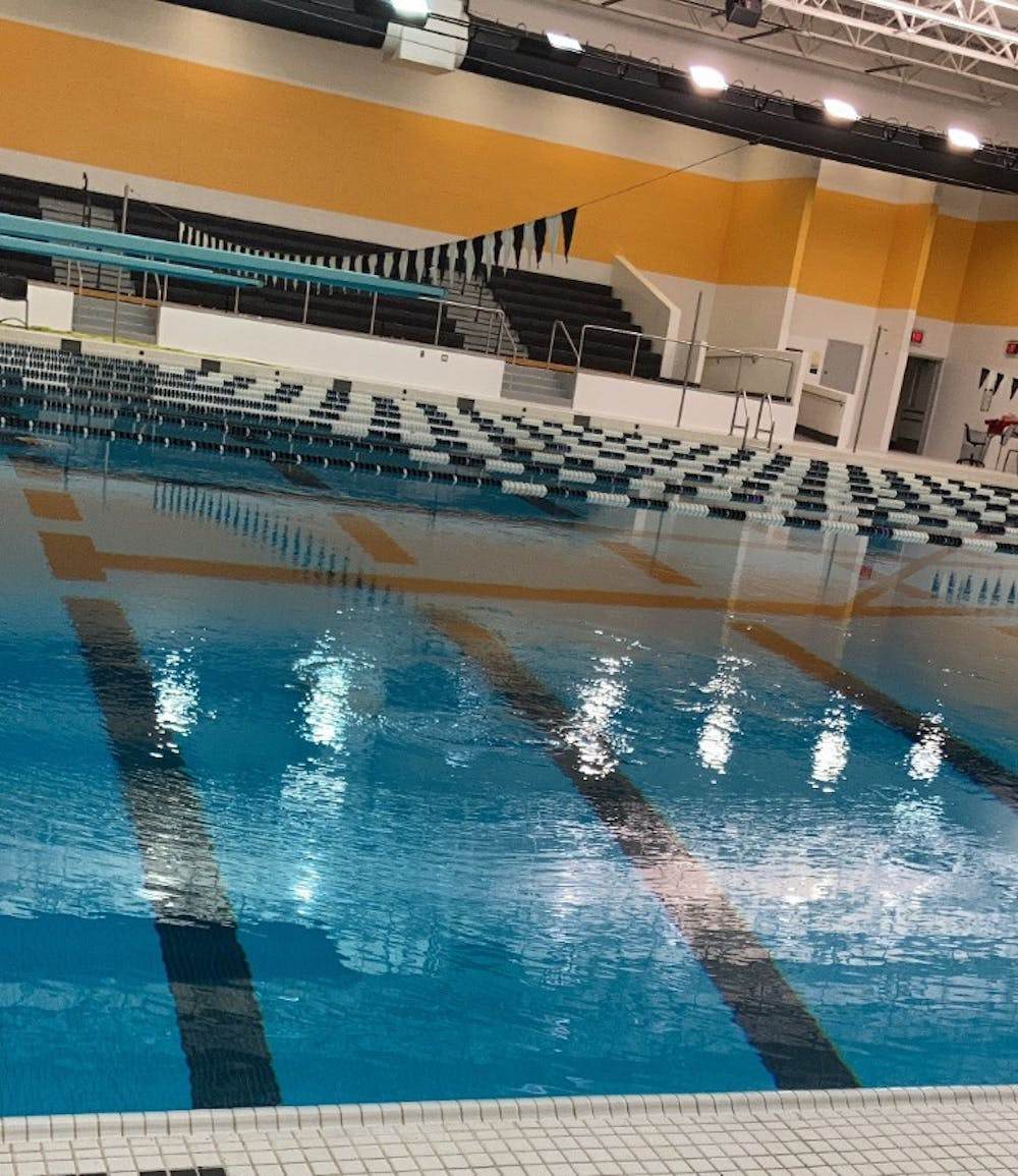 """<p>""""All of the water in the pool is circulated through sand filters for cleaning,"""" swim coach Gary Peterson said. Photo by Crusaders' Chronicle.</p>"""