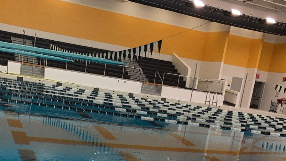 """""""All of the water in the pool is circulated through sand filters for cleaning,"""" swim coach Gary Peterson said. Photo by Crusaders' Chronicle."""