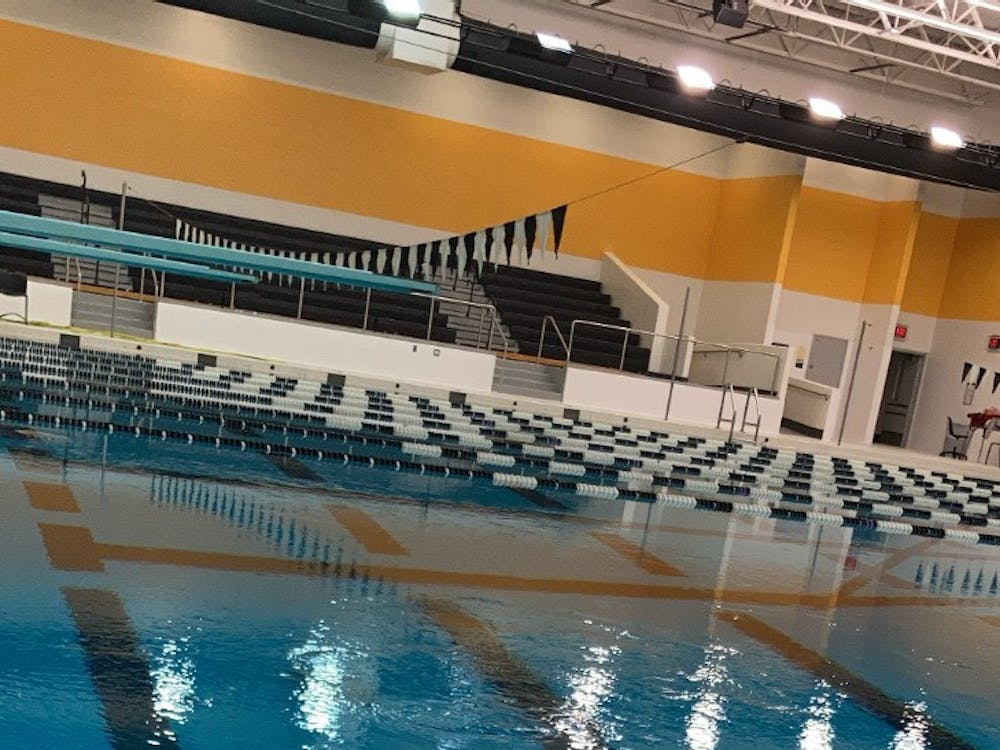 """All of the water in the pool is circulated through sand filters for cleaning,"" swim coach Gary Peterson said. Photo by Crusaders' Chronicle."