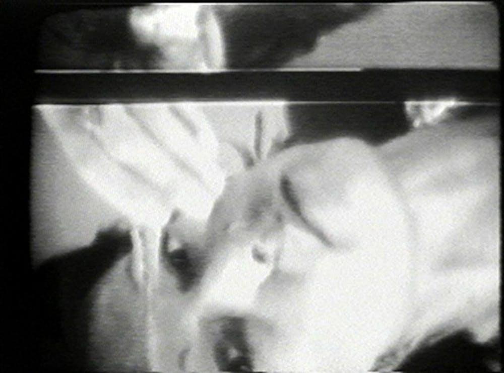 Joan_Jonas_Vertical_Roll.jpg