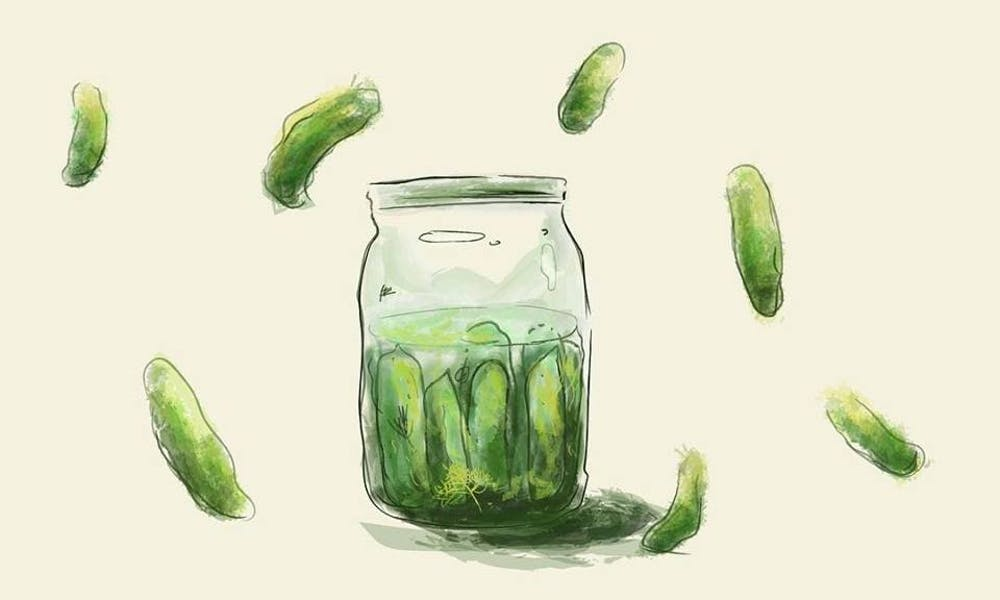 pickles roundup .jpg