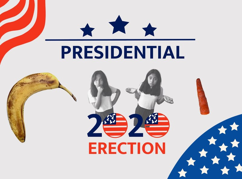 Your Guide to the 2020 Erection: Vote Bigger and Better