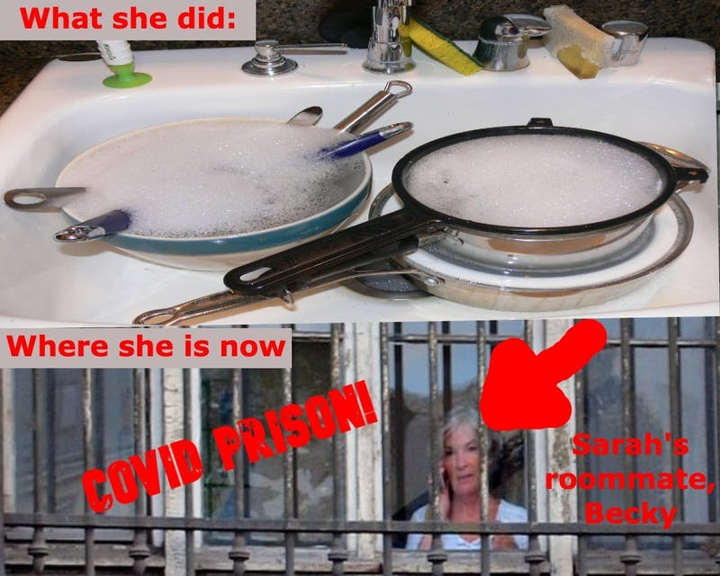 Sarah's Roommate Doesn't Do Dishes, Sarah Sends Her to COVID Prison